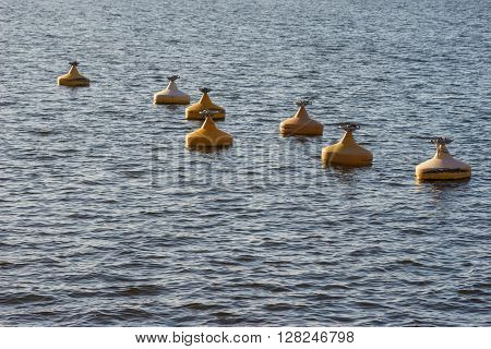 Many of yellow metall buoys floating in sea water