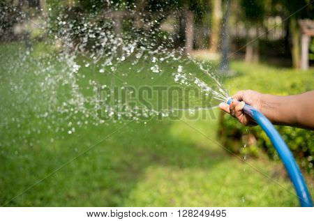 Gardener watering the garden on sunny day