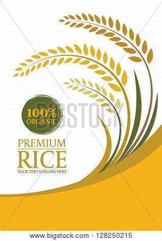 Yellow Paddy Rice For Background - Layout Template Size A4 Vector Design