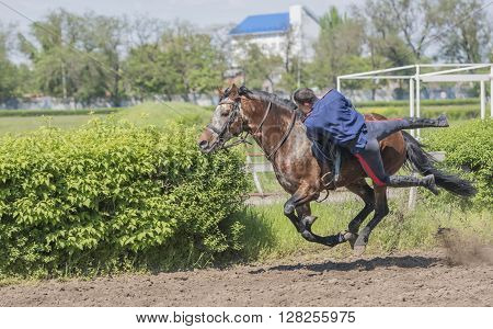 ROSTOV-ON-DON; RUSSIA- MAY 02- Speech by the athlete on a horse at the racetrack on the opening day on May 02 2016 in Rostov-on-Don