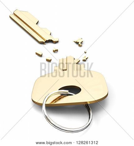 Broken key isolated on white background. 3d render image.