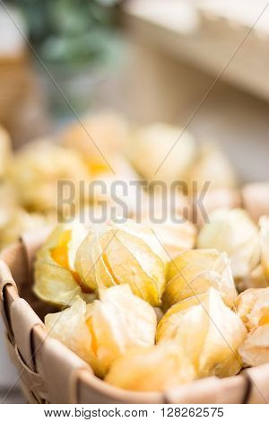 Closeup of Cape gooseberry (Physalis) healthy fruit and vegetable