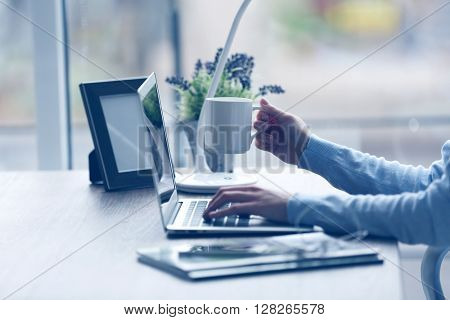 Woman's hands using laptop at the table