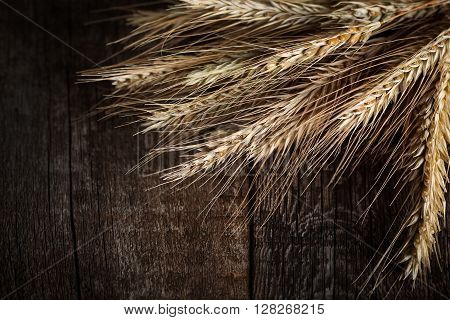 Wheat And Barley On Wood