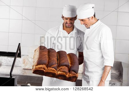 Backers Analyzing Bread Loaves In Bakery