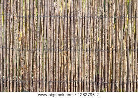 Stick Fence