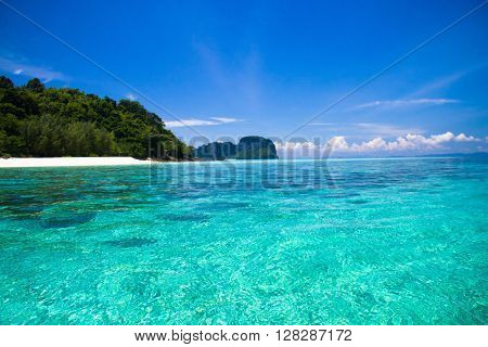 Serenity Shore Sunny Panorama