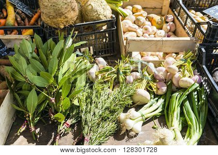 Vegetables and herbs in boxes on a market stall in Paris, France
