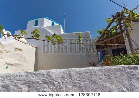 White chuch with vine in town of Parakia, Paros island, Cyclades, Greece