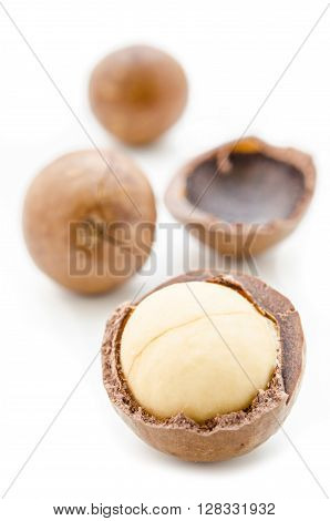 Close up Macadamia nuts on white background