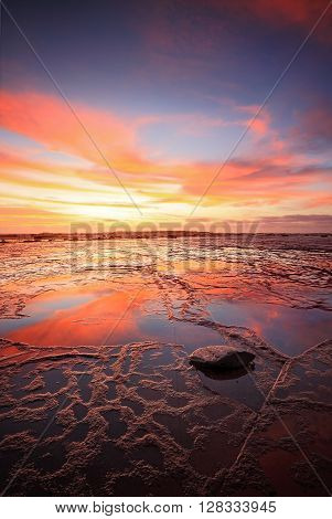 Vertical views across the vast rockshelf of Long Reef at low tide during a vivid sunrise with reflections of the sky in the wet rocks exposed. Lone fisherman at horizon gives dimension to space. Orientation suitable for magazine or vertical brochure.