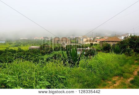 Nova Sintra Under Fog