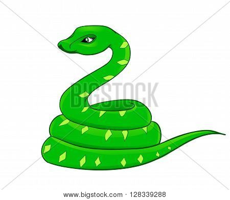snake cartoon with isolation on a white background