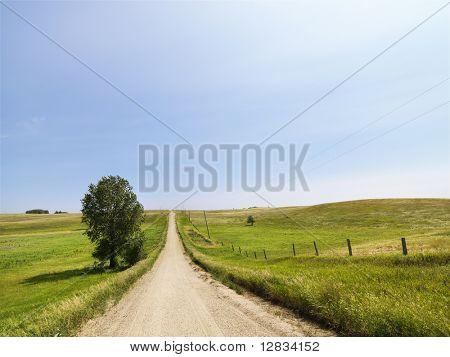 Scenic country rural gravel road leading toward the horizon.