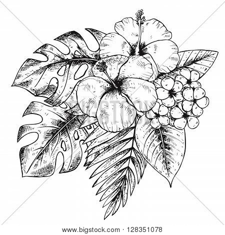 Black and white hand drawn graphic tropical plants and flowers in sketch style. Summer hawaiian vector illustration.