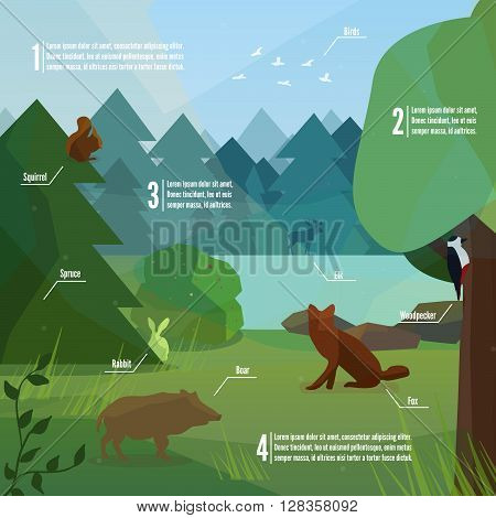 Forest infographic in low polygon style. Vector illustration of forest animals. Boar woodpecker fox rabbit and elk vector illustration for web mobile and print.