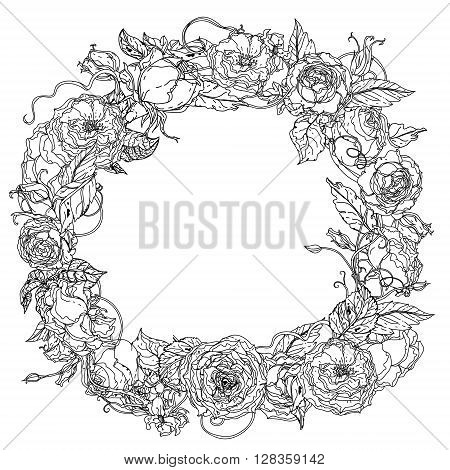 Artistic uncolored  for colouring book wreath ring of roses  bouquet in zenart style for Adult coloring book in famous zenart style. Hand-drawn, doodle, vector for design, wedding cards, coloring book