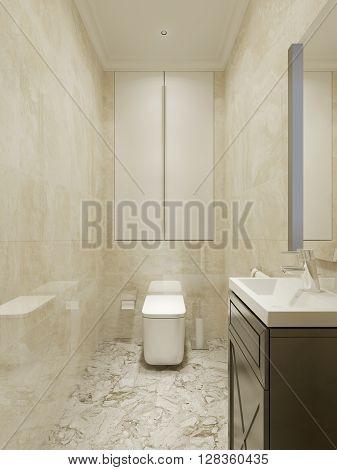 Bathroom classic design, tiny wc interior. 3d render