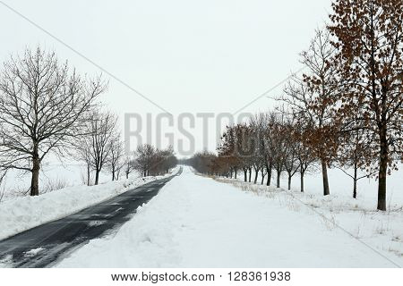 Landscape of snowy rustic road