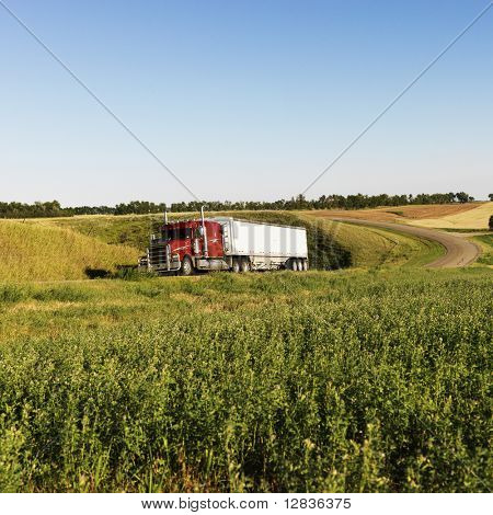 Semi tractor truck on rural road with green plants on shoulder.