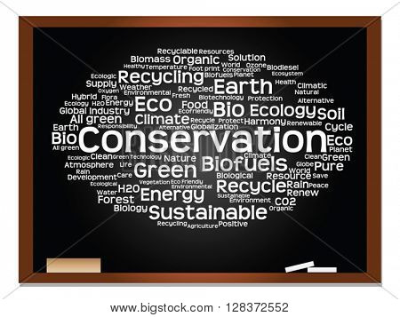 Vector concept or conceptual abstract green ecology and conservation word cloud text on blackboard with chalk background