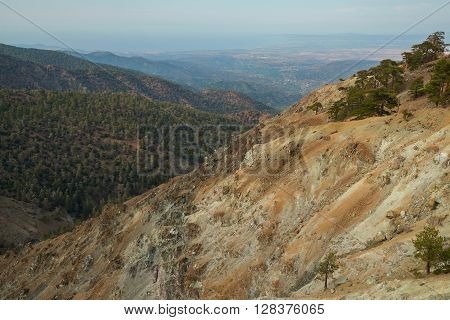 Wonderful landscape in mountains. The slopes of the ocher-colored covered with pine forest.