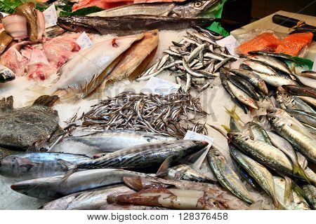 Seafood Market In Spain