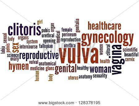 Vulva, Word Cloud Concept