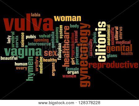 Vulva, Word Cloud Concept 2