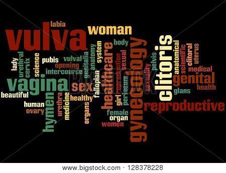 Vulva, Word Cloud Concept 2