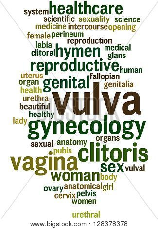 Vulva, Word Cloud Concept 5
