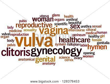 Vulva Word Cloud Concept 7