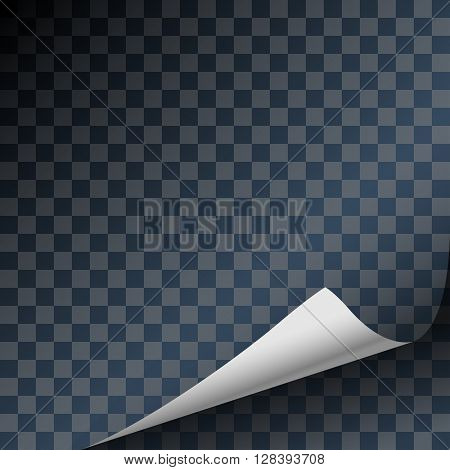 Curled Paper Sheet Corner With Shadow on Transparent Background. Design Element. Illustration Vector