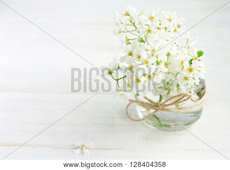 White spring orchard blossom in handmade vase - glass jar with twine ribbon. Soft light, soft focus.