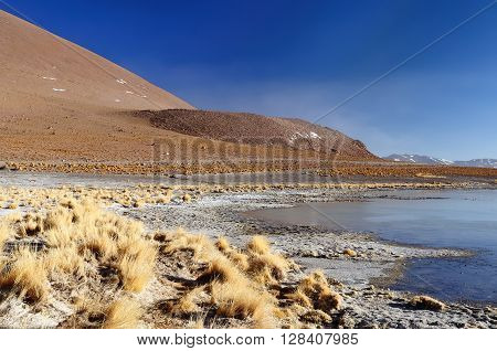 South America - Bolivia. The surreal landscape is nearly treeless punctuated by gentle hills and volcanoes near Chilean border. The picture present hot spring on the morning time