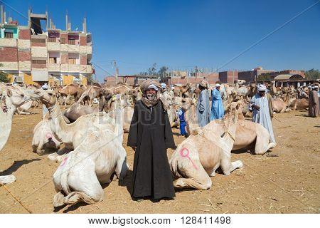 DARAW, EGYPT - FEBRUARY 6, 2016: Local camel salesman on Camel market.