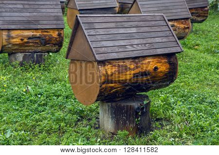 few beehive in the mountains of Abkhazia from the tree stump spring