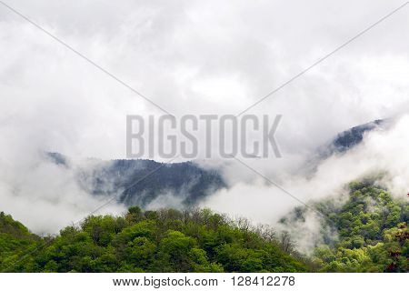 mountain green forest with clouds in the sky in Abkhazia in the spring