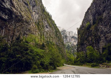 mountain gorge with a road and a forest, in Abkhazia in the spring