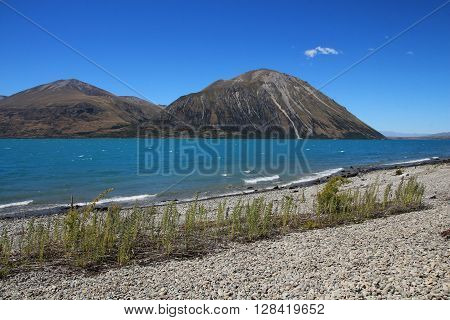 Beautiful landscape on the South Island. Summer scene in New Zealand.