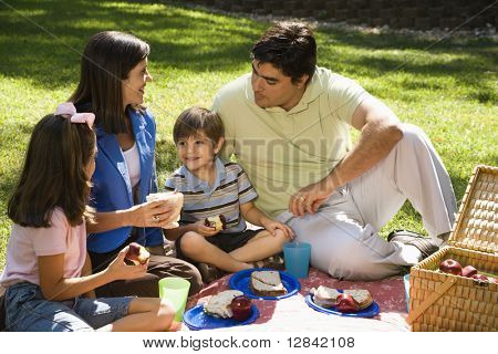 Hispanic family picnic in the park.