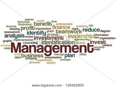 Management, Word Cloud Concept