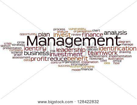 Management, Word Cloud Concept 3