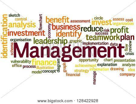 Management, Word Cloud Concept 8