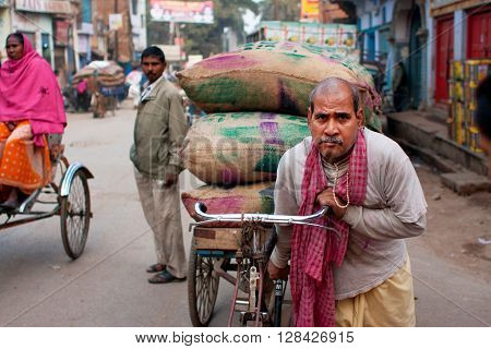 VARANASI, INDIA - JANUARY 1, 2013: Indian loader works hard and carries bags of cargo on an old bicycle in the oldest asian city on January 1 2013. Varanasi urban agglomeration had a population of 1435113