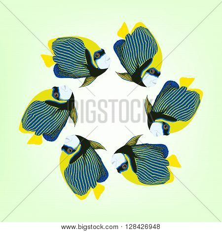 Vector illustration of six swimming fishes. Frame from fishes Pomacanthus imperator. Six swimming Emperor angelfishes.