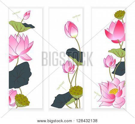 Blooming pink lotus three banners vector illustration