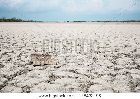 wood board on drought ground image concept and ideas. About woodcutting and drought.