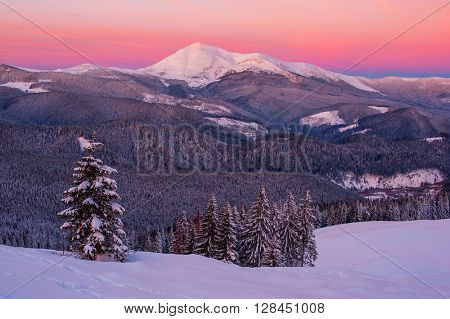 Fantastic orange evening landscape glowing by sunlight. Dramatic wintry scene with snowy trees. Carpathians, Ukraine, Europe.