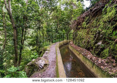 Levada Dos Tornos, irrigation canal on Madeira island, Portugal